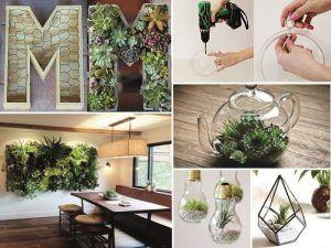 Arredare con le piante: 10 idee