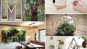 Arredare con le piante. 10 idee a cui non hai mai pensato