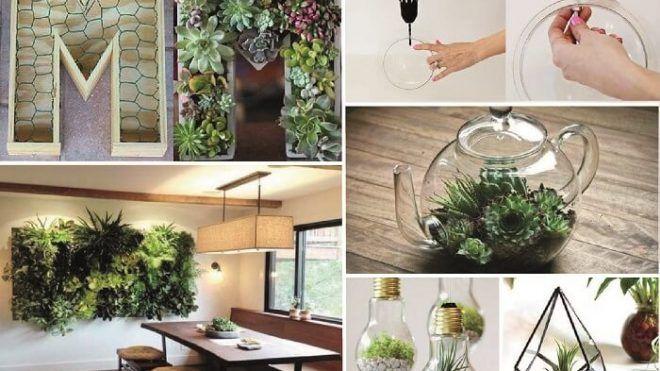Arredare con le piante 10 idee a cui non hai mai pensato for Arredare il giardino con le piante
