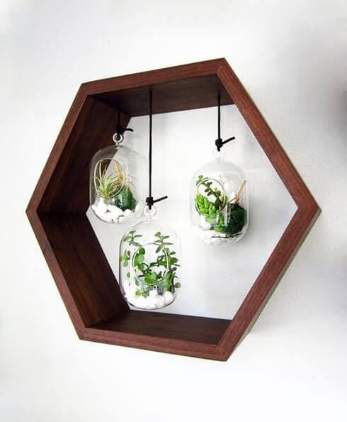 Arredare con le piante: vasetti con cornice