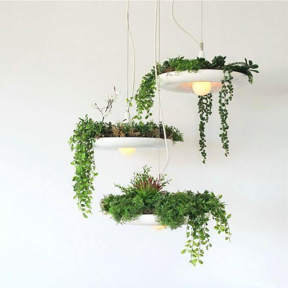 Arredare con le piante: green design con lampadari