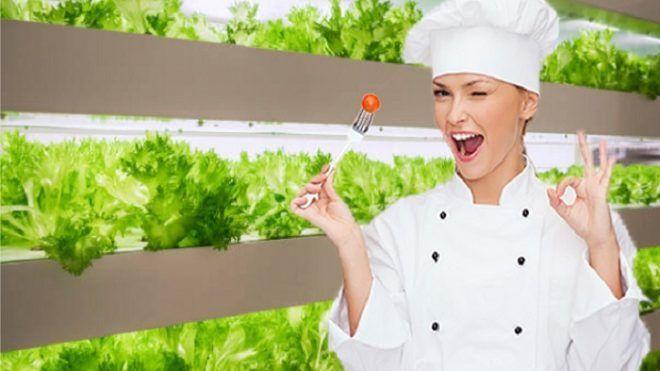 Vertical Farm. Il nuovo trend dell'agricoltura fai da te
