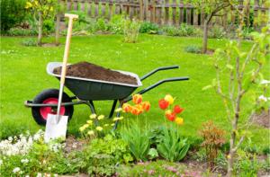 Cosmogarden - informazioni per mantenere un giardino sano e in ordine