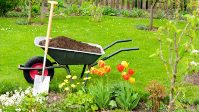 Quanto costa mantenere un giardino?