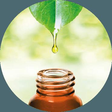 """L'utilizzo delle essenze vegetali nella cosmesi naturale. Autoproduzione cosmetica """"spiragli d'autonomia"""""""