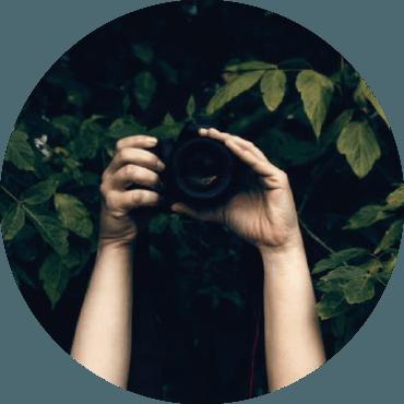 Foto-grafare la Foto-sintesi. Consigli per saper osservare e immortalare piante e paesaggi