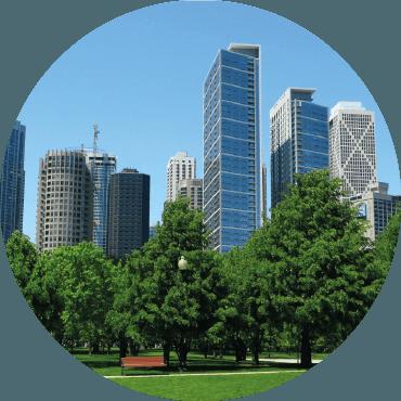 GREEN CITY, servizi ecosistemici del verde in ambiente urbano