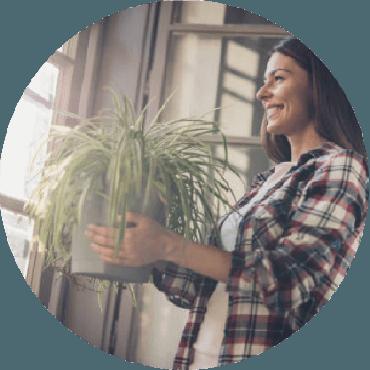 Le piante che migliorano la vita: salute e benessere con le piante
