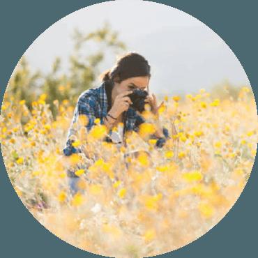 Panorami vegetali in fotografia. Fiori interstellari, paesaggi illusionistici e nuove specie arboree