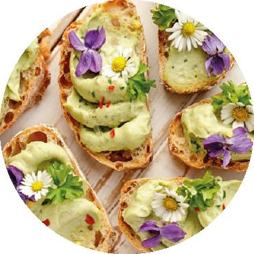Uso delle piante eduli ornamentali: il giardino da mangiare