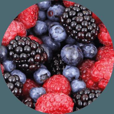 Piccoli frutti: raccomandazioni per una gestione ottimale in regime biologico ed integrato