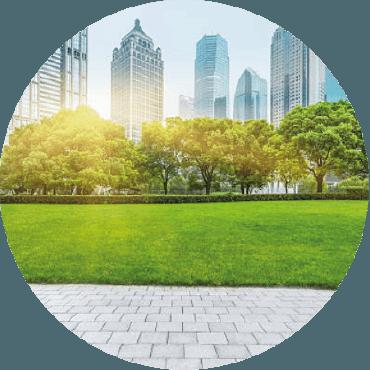 L'utilizzo del verde per la rigenerazione urbana