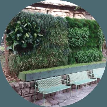 Innovazione nel verde verticale e nei giardini pensili