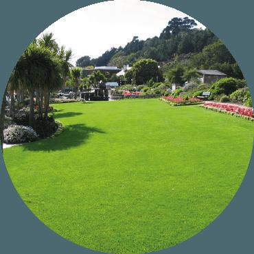 Sostenibilità ambientale del giardino
